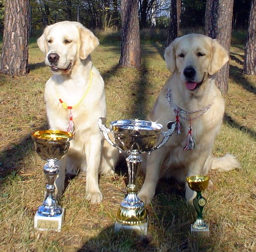 Aireen & Mimi with their dog show awards :o))